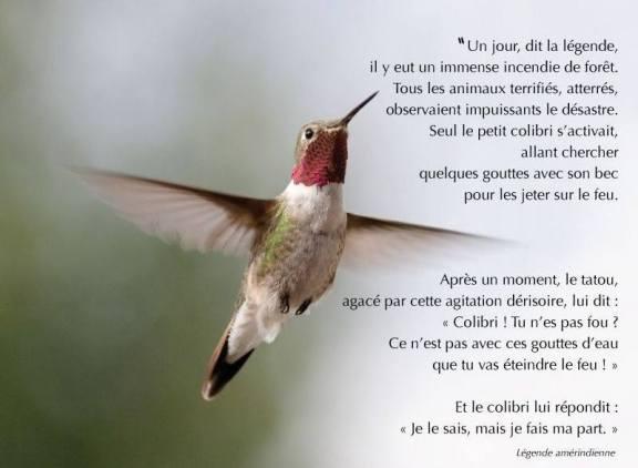 colibri légende amérindienne