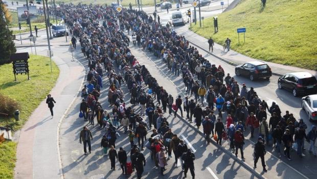 milos-zeman-invasion-organisee
