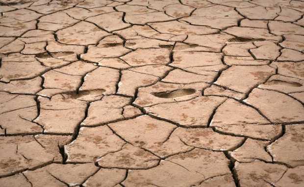 Panhandle Drought 17 BRO