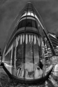 finance-requin-tueur-entreprise